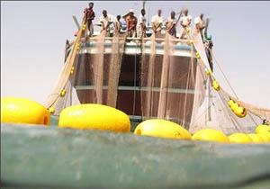 علی رمضانی حکمی: افزایش صید در آبهای آزاد به دلیل حضور ناوگان نیروی دریایی ارتش