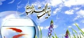 hormozban.ir-13941227-4