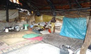 ارائه خدمات کمیته امداد به نیازمندان در روستای صعب العبور کوهشاه احمدی