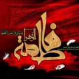 حضرت زهرای بتول شخصیتی فرا دینی و مایه الفت و وحدت امت اسلامی است