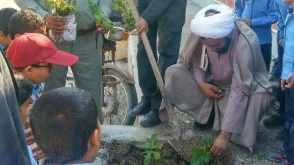 کاشت نهال توسط نونهالان ابوموسی در قاب عکس