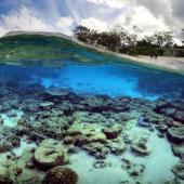 اولین همایش ملی تغییر اقلیم و اکوسیستم های آبی برگزار می شود