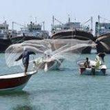 توقیف کشتی صیادی متخلف با ۸ هزار کیلوگرم ماهی در جاسک