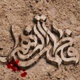 حضرت زهرا (س) بهترین معلم  و الگوی سواد و فعالیت سیاسی