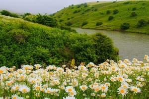 منابع طبیعی هرمزگان متمایز از دیگر نقاط کشور