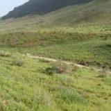 ۵۴۰ میلیارد ریال برای اجرای پروژه های آبخیزداری در هرمزگان