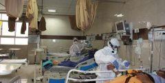 تعداد مبتلایان به ویروس کرونا در هرمزگان به ۱۶۱ نفر رسید